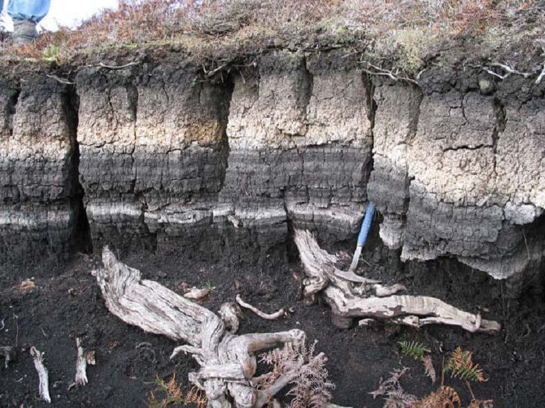 Отложения пепла на острове Чатем