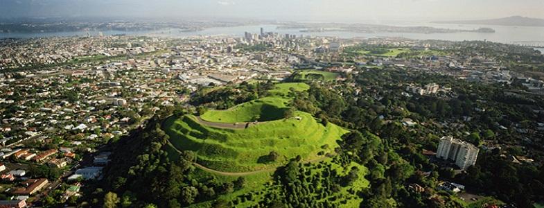Оклендское поле