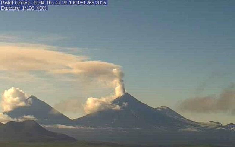 Павлова вулкан 28 июля